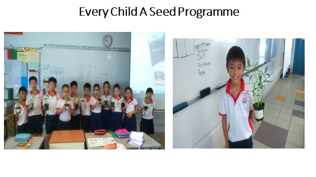 Every Child  A Seed Programme.jpg