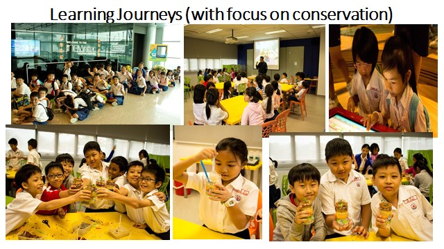 Learning Journeys - with focus on conservation.jpg